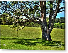 Tree With A Swing Acrylic Print by Kaye Menner