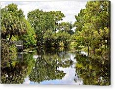 Treeflections Acrylic Print