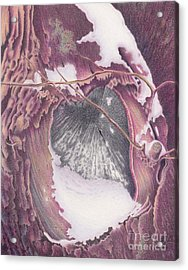 Treeheart Acrylic Print