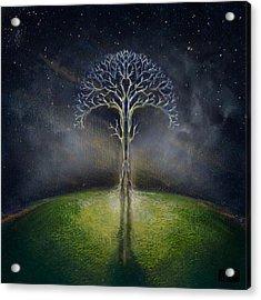 Treelogy II Acrylic Print by Vincent Carrozza
