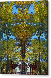 Trees Alive Acrylic Print by Susan Leggett