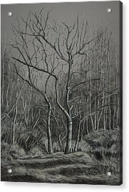 Trees Along The Greenway Acrylic Print by Janet Felts