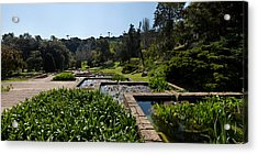 Trees And Aquatic Plants In The Garden Acrylic Print by Panoramic Images