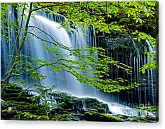 Trees And Falls Acrylic Print by Paul W Faust -  Impressions of Light