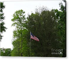 Trees And Flag Acrylic Print by Joseph Baril