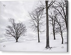 Trees And Snow Acrylic Print by Wendell Thompson