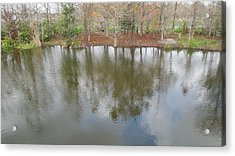 Acrylic Print featuring the photograph Trees And Water by Ron Davidson