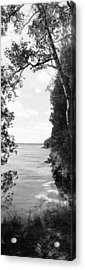 Trees At The Lakeside, Cave Point Acrylic Print by Panoramic Images