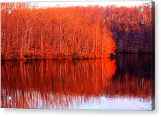 Trees By River Acrylic Print by Jose Lopez