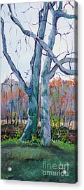 Sister Trees Acrylic Print by Janet Felts