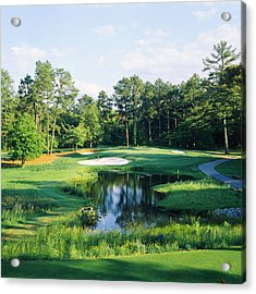 Trees In A Golf Course, Pine Needles Acrylic Print by Panoramic Images