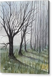 Trees In Fog Acrylic Print