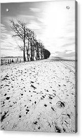 Trees In Snow Scotland II Acrylic Print by John Farnan