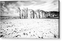Trees In Snow Scotland Iv Acrylic Print by John Farnan