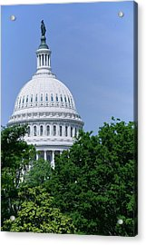 Trees In Spring And U.s. Capitol Dome Acrylic Print