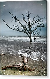 Trees In Surf Acrylic Print by Steven Ainsworth
