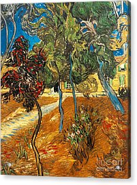 Trees In The Asylum Gardens Acrylic Print by Vincent Van Gogh