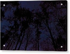 Trees In The Georgia Twighlight Acrylic Print