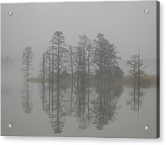 Acrylic Print featuring the digital art Trees In The Mist  by Claude McCoy