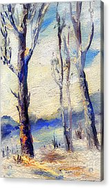Trees In Winter Acrylic Print