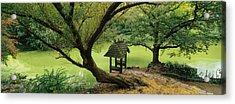 Trees Near A Pond, Central Park Acrylic Print