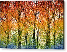 Trees Of The Rainbow Acrylic Print