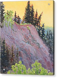 Trees On Top Acrylic Print by Susan McCullough
