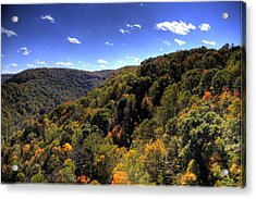 Trees Over Rolling Hills Acrylic Print