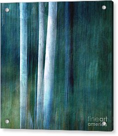 The Woods Are Lovely Dark And Deep Acrylic Print by Priska Wettstein