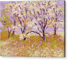 Trees I Acrylic Print