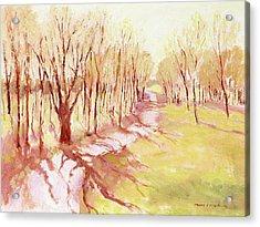 Trees4 Acrylic Print by J Reifsnyder