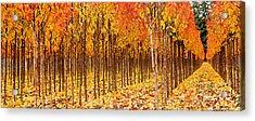 Treescape 2 Acrylic Print