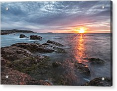Trembling On The Shore Acrylic Print by Jon Glaser