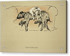 Trepidation, 1930, 1st Edition Acrylic Print