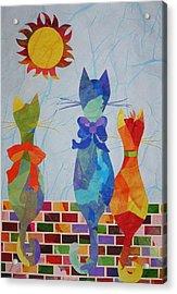 Tres Gatos Acrylic Print