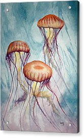 Tres Jellyfish Acrylic Print by Jeff Lucas