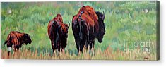 TRI Acrylic Print by Patricia A Griffin