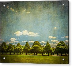 Triangular Trees 003 Acrylic Print