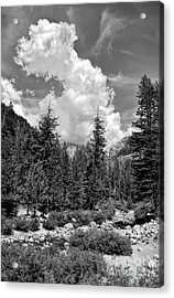 tribute to Ansel Adams Acrylic Print