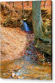 Trickling Waterfall By Shellhammer Acrylic Print