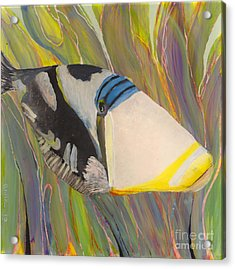 Triggerfish 2 Acrylic Print by Anna Skaradzinska
