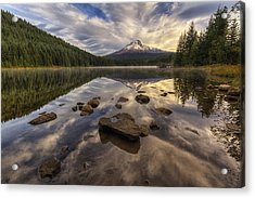 Trillium Reflection Acrylic Print