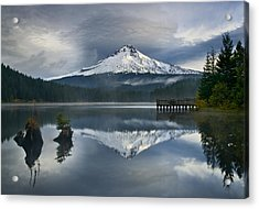 Trillium Reflections Acrylic Print by David  Forster