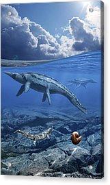 Trinacromerum Marine Reptiles Acrylic Print