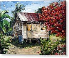 Trinidad Life 1  Acrylic Print by Karin  Dawn Kelshall- Best