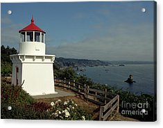 Trinidad Light Acrylic Print by Sharon Elliott