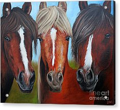 Acrylic Print featuring the painting Trio by Debbie Hart