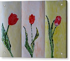 Trio Of  Red Tulips Acrylic Print by Sonali Gangane