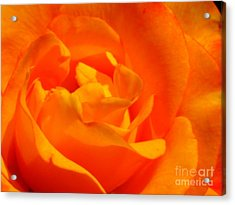 Acrylic Print featuring the photograph Trip Around The Sun by Patti Whitten