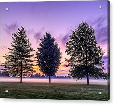 Triplets In Morning Fog Acrylic Print by Chris Bordeleau